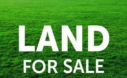 How To Buy Land In Kenya